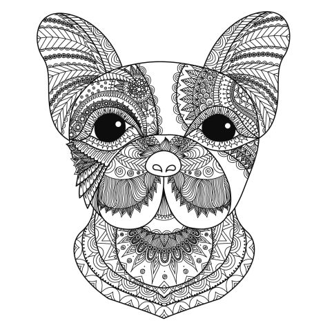 French Bulldog Coloring Pages 5