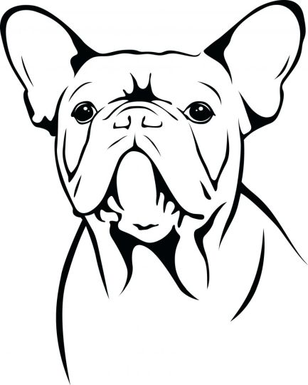 French Bulldog Coloring Pages 6
