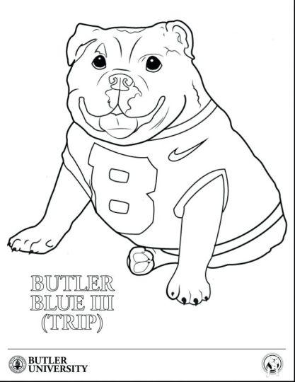 Georgia English Bulldog Coloring Pages 11
