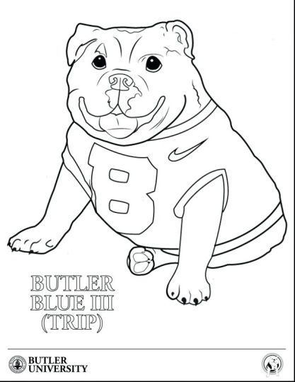 georgia english bulldog coloring pages part 2 - Bulldog Coloring Pages