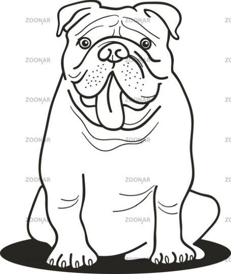 Georgia English Bulldog Coloring Pages 17