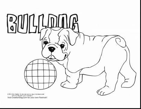 Georgia English Bulldog Coloring Pages 18