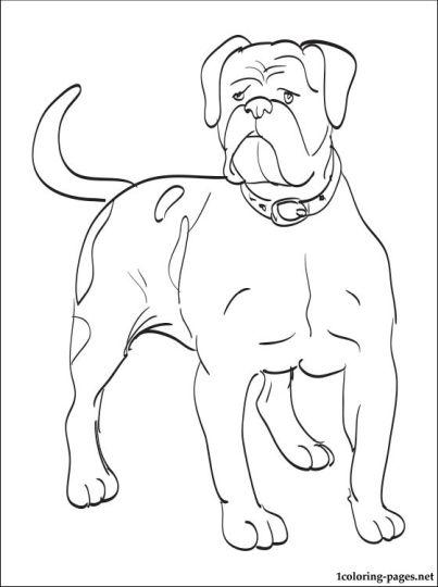 Georgia English Bulldog Coloring Pages 19