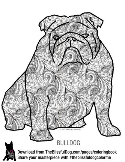 Georgia English Bulldog Coloring Pages 22