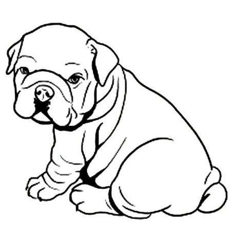 Georgia English Bulldog Coloring Pages 25