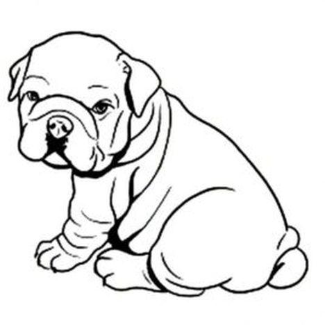 Georgia English Bulldog Coloring Pages 34