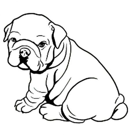 Georgia English Bulldog Coloring Pages 37