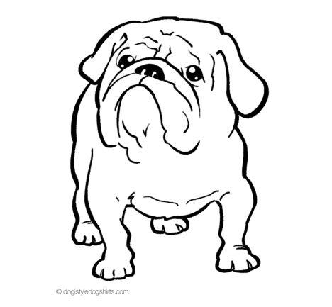 Georgia English Bulldog Coloring Pages 40