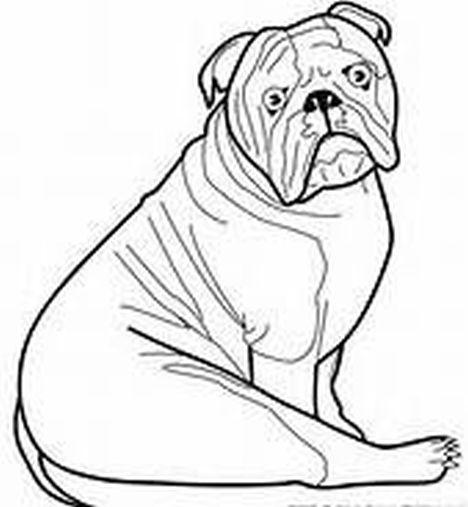 Georgia English Bulldog Coloring Pages 46
