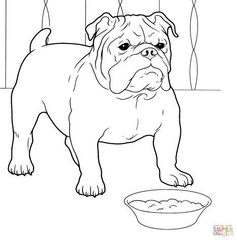 Georgia English Bulldog Coloring Pages 49