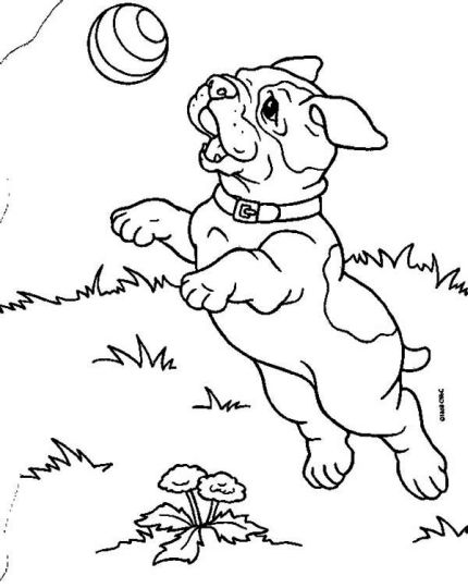 Georgia English Bulldog Coloring Pages 50