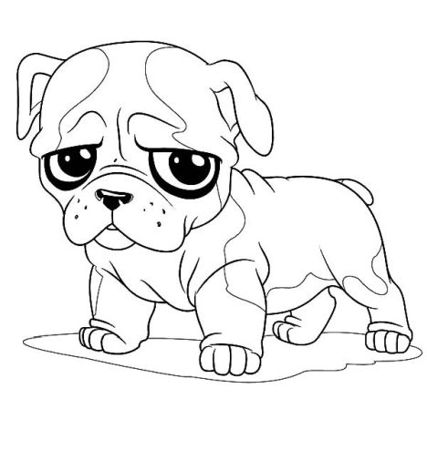 Georgia English Bulldog Coloring Pages 9