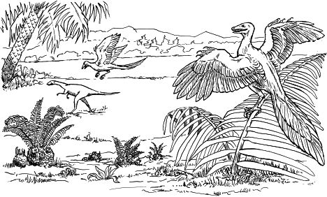Pterodactyl Colouring Pages 14