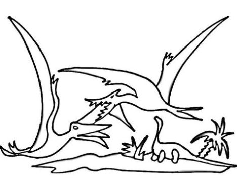 Pterodactyl Colouring Pages 15