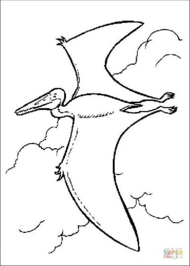 Pterodactyl Colouring Pages 17
