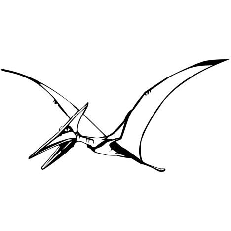Pterodactyl Colouring Pages 18