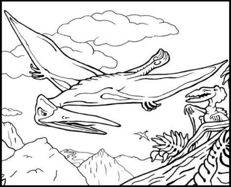 Pterodactyl Colouring Pages 19