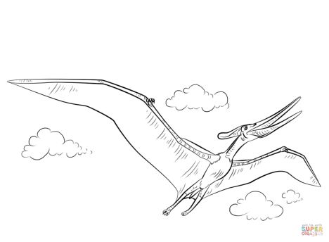 Pterodactyl Colouring Pages 22