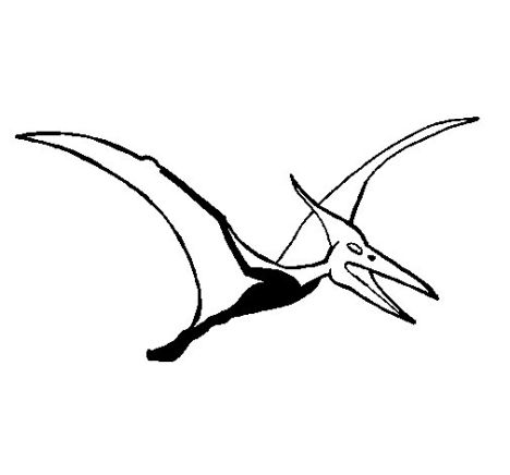 Pterodactyl Colouring Pages 28