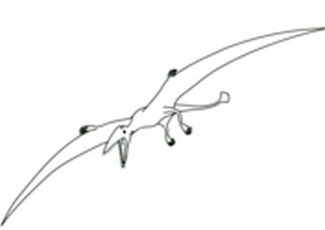 Pterodactyl Colouring Pages 34