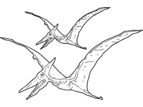 Pterodactyl Colouring Pages 38
