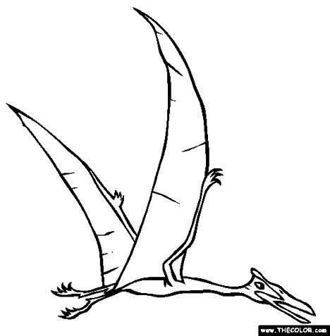 Pterodactyl Colouring Pages 39